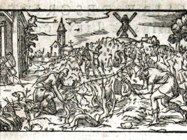 Ilustration chapitre 3 1603